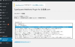 TypeSquare Webfonts Plugin for お名前.com設定